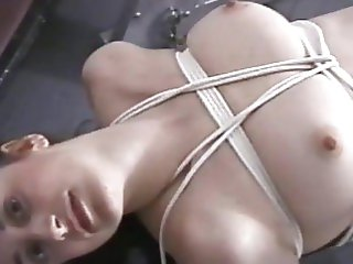 tied tied up