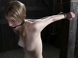 perfect punishment