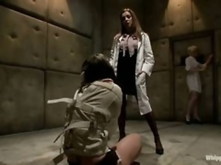 abused bus doctor