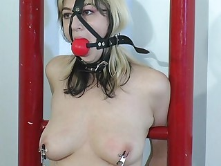 bondage bra master